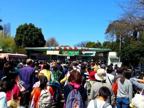 31. marts 2015: Ueno Park