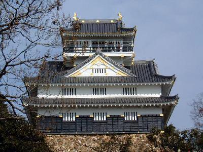 Gifu-borgen