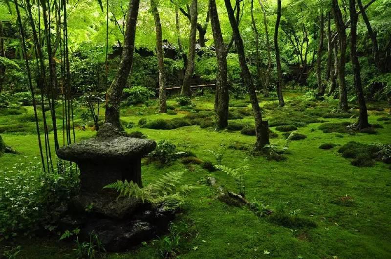 Gioji-templet