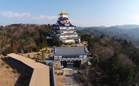 Samurai Kingdom Ninja Ise