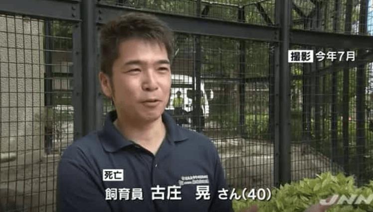 Tigerangrebet i Hirakawa Zoo
