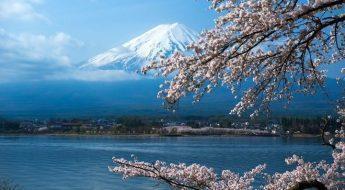 Japans verdensarv