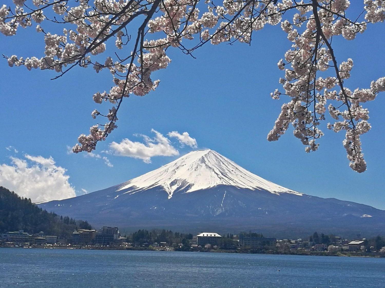 15. april 2019: Kawaguchiko og Takao-bjerget