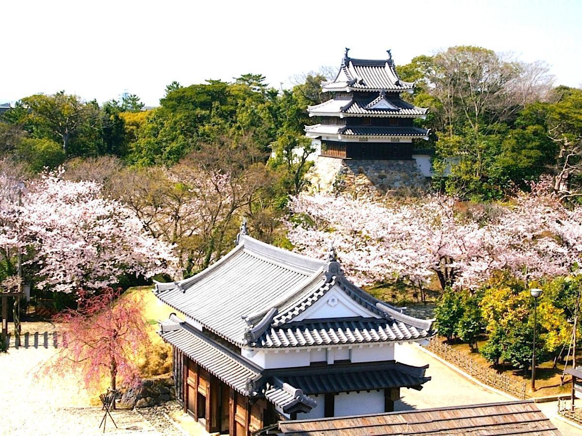 Nishio-borgen