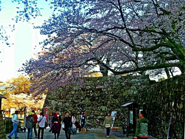 15. april 2017: Matsumoto, Hikone og Momoyama