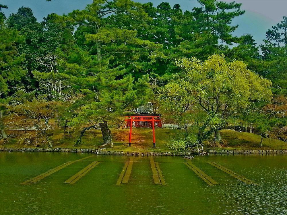 Torii i Nara (2017)