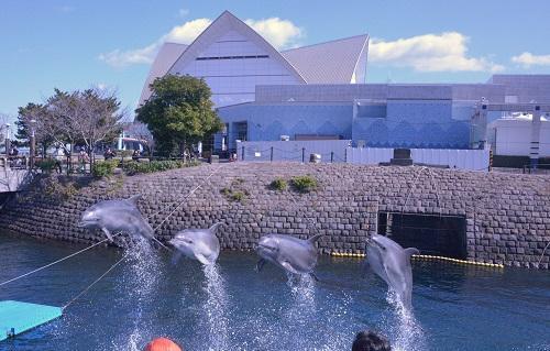 Kagoshina Akvarium
