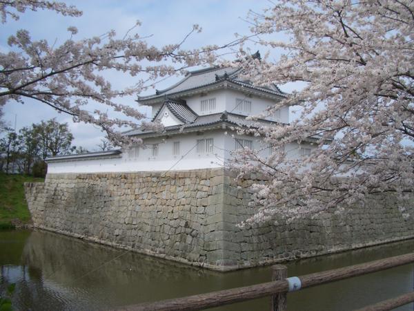 Minakuchi-borgen